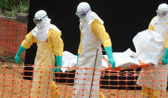 Ebola-linked deaths tops 8,000: WHO
