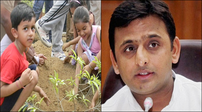Akhilesh's government aims to plant  6,70,803 saplings on July 11